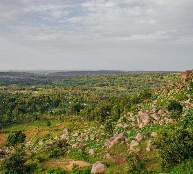 Natural Trail to Ndere Island - Lake Kanyaboli - Mama Sarah Obama's
